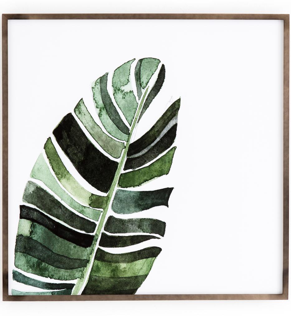 Banana Leaf by Jess Engle
