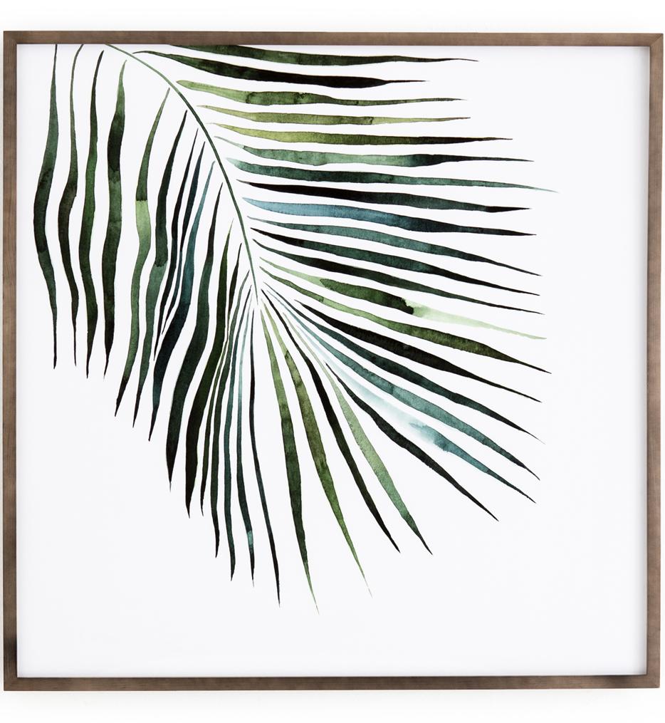Palm by Jess Engle