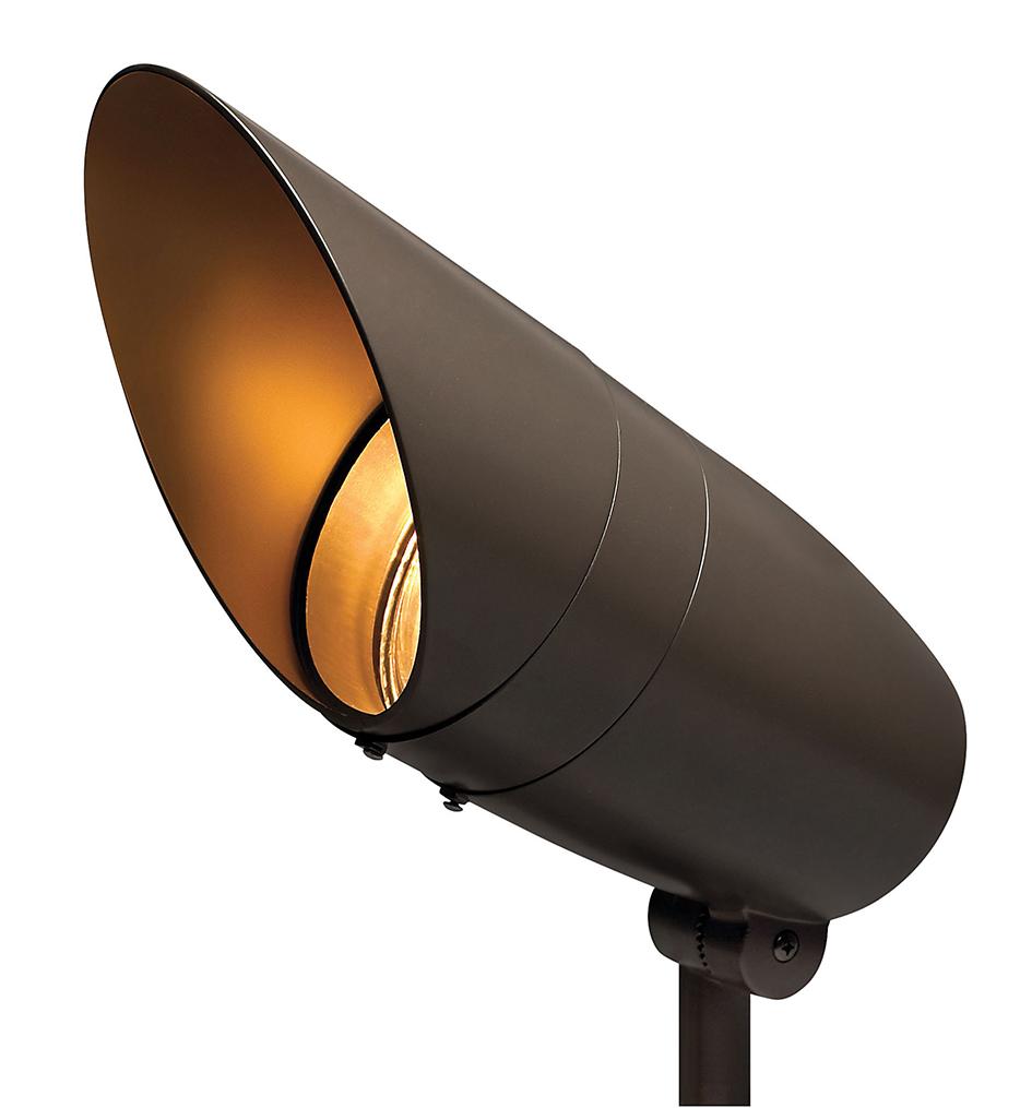 Line Voltage Accent Large Spot Light