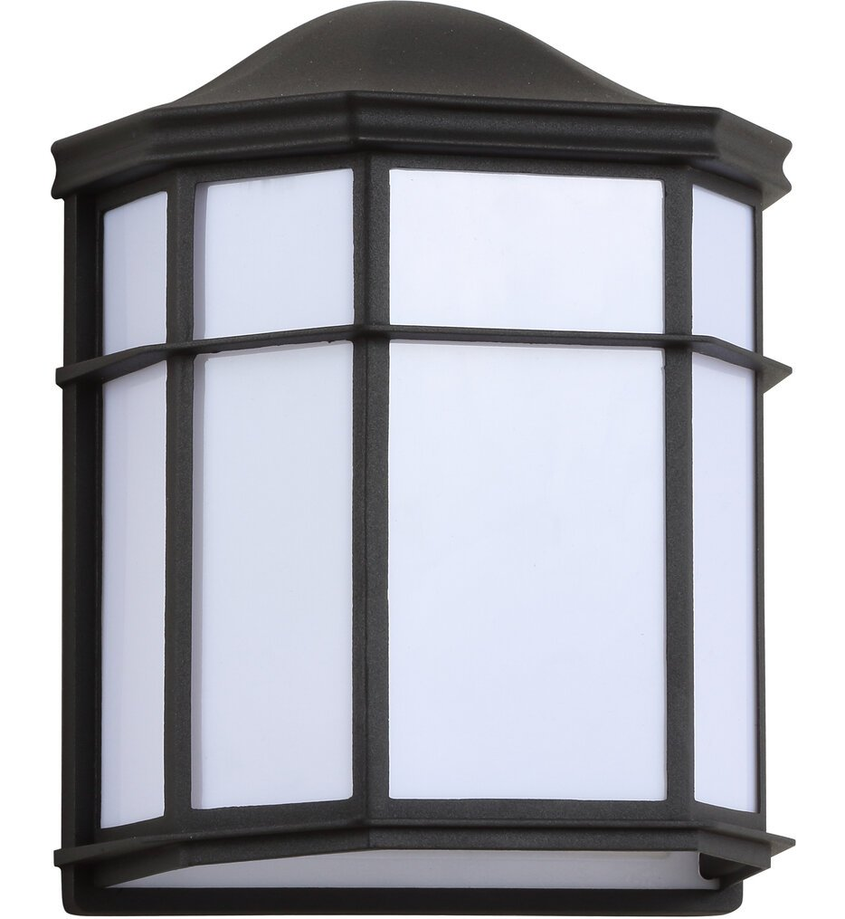 """Henry 9.75"""" Outdoor Wall Sconce"""