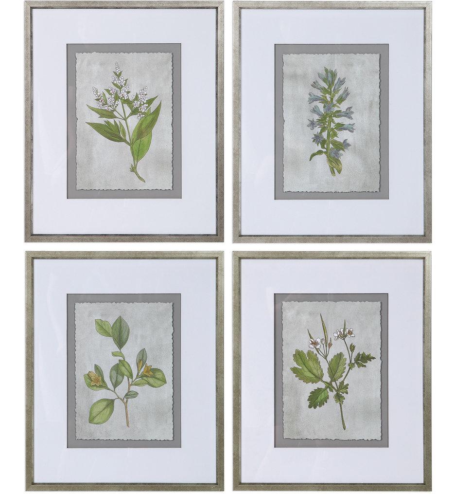 Stem Study Framed Prints (Set of 4)