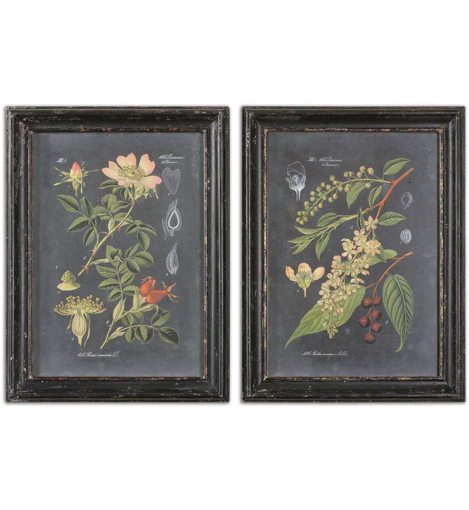 Midnight Botanicals Wall Art (Set of 2)