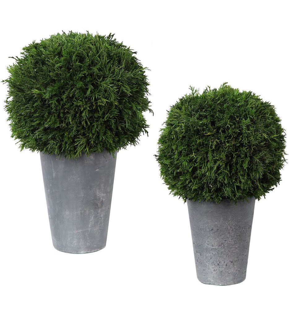 Cypress Globes (Set of 2)
