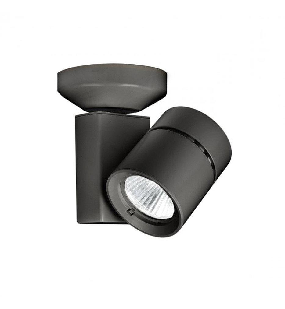Exterminator II LED Narrow Flood Beam Ceiling Monopoint