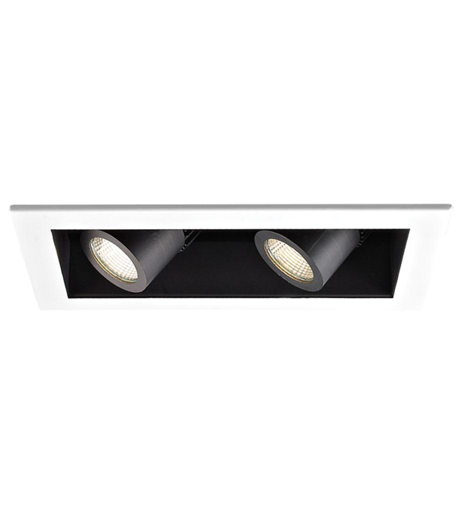 Visible Trim 2 Light LED Precision Module Trim
