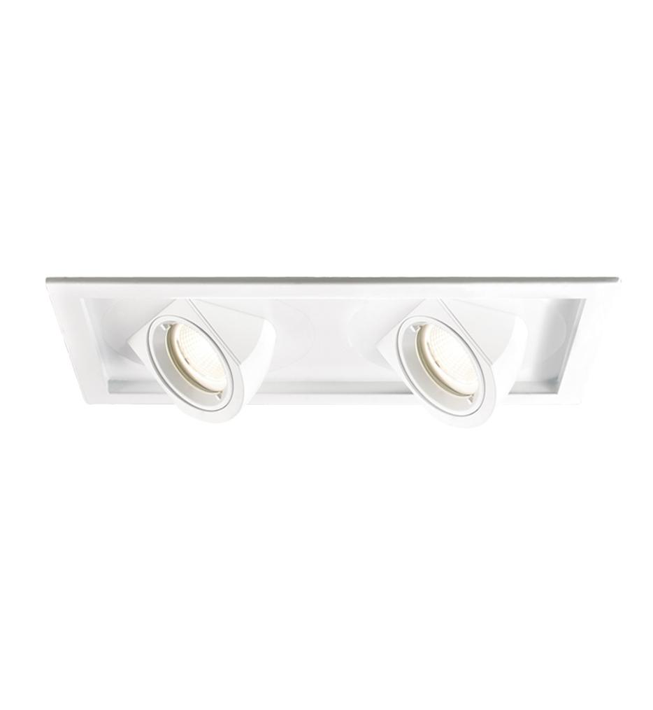 Visible Trim Spot Beam 2 Light Tesla LED Multiple Spot Trim & Module