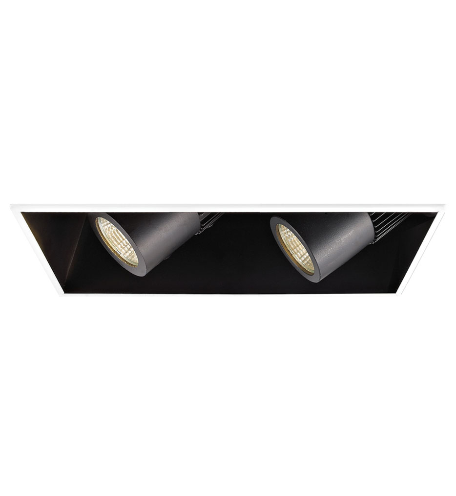Flood Beam ELV Dim Non-IC Volt 2 Light LED Precision Housing & Module