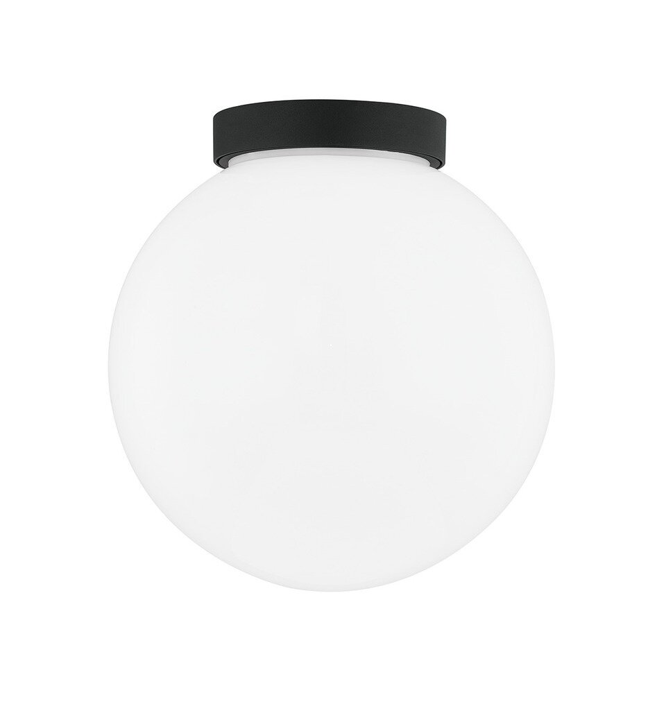 """Ansel 10"""" Outdoor Wall Sconce"""