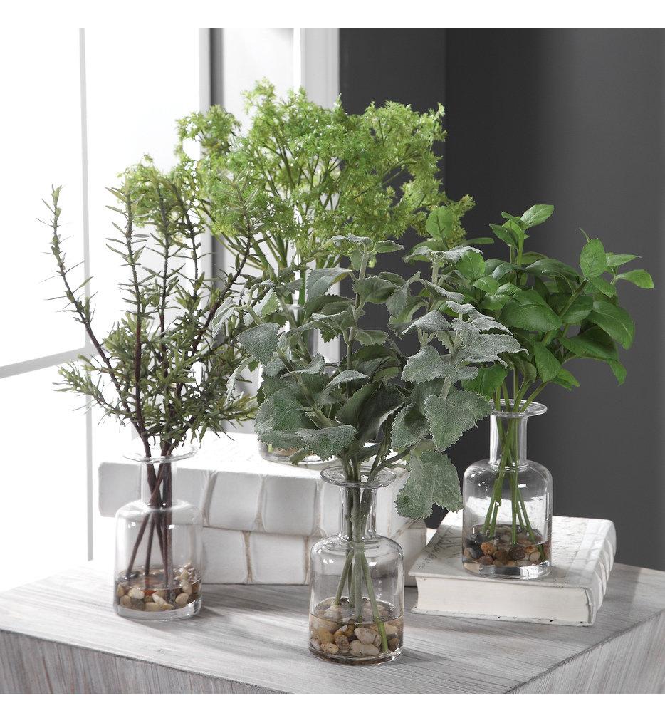 Ceci Kitchen Herbs (Set of 4)