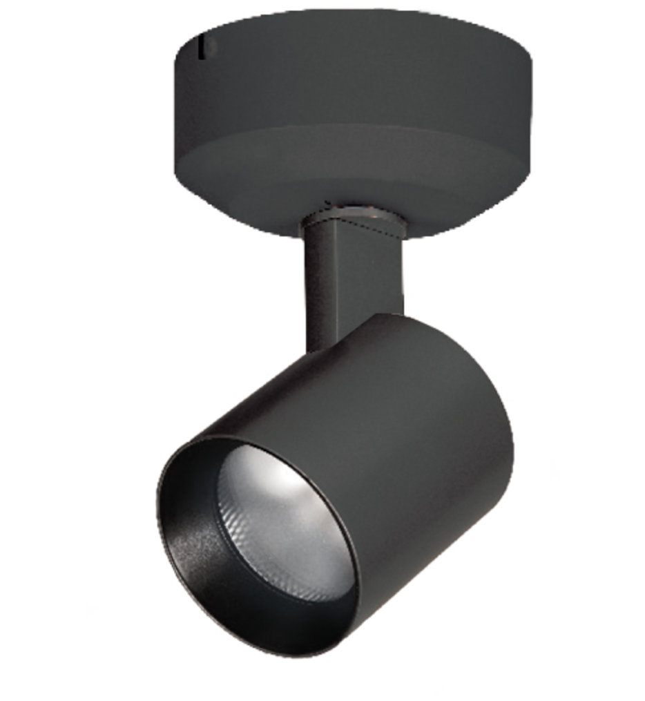 Lucio 10 Watt LED Ceiling Monopoint